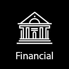 v_financial